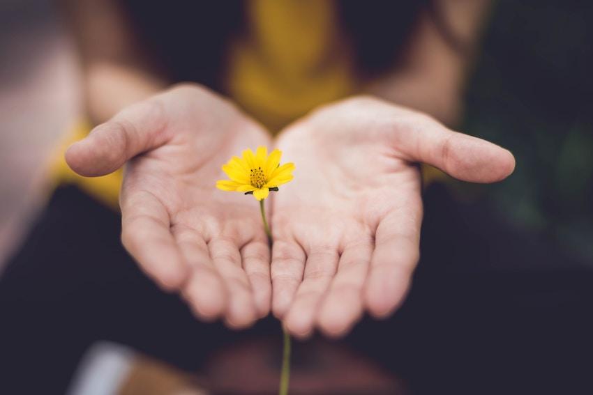 El-perdón--el-primer-paso-hacia-la-paz-interior-1